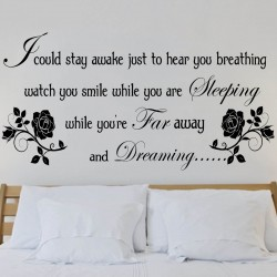 Aerosmith wall art sticker...
